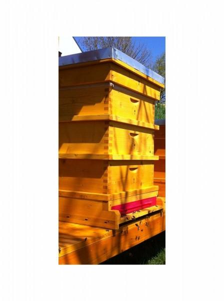 Lixum Pro Beutenschutz Lasur Bienenbeute - Anstrich für 3 Beuten DN